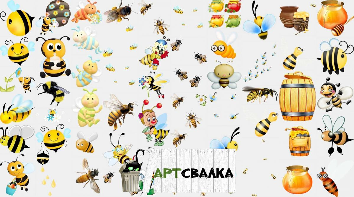 Пчелы и мед PNG | Bees and honey PNG